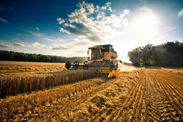 Agricoltura tra fisco e lavoro | Confagricoltura Latina